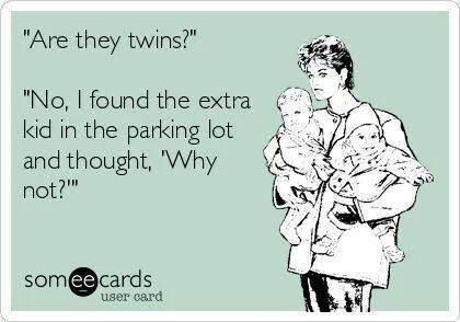 Twin Parenting Meme