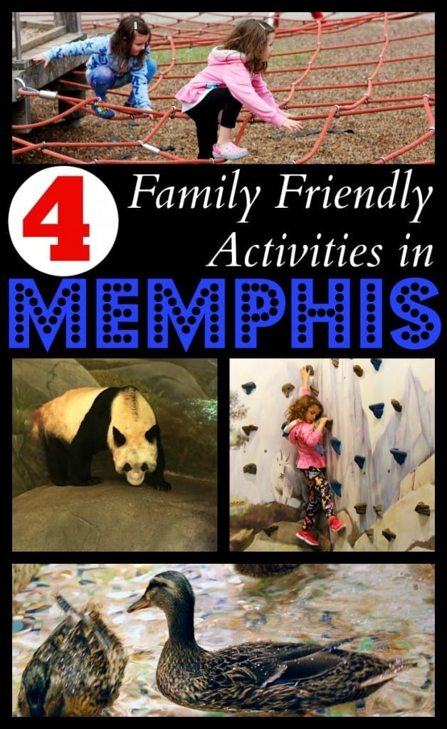 4 Family Friendly Activities in Memphis