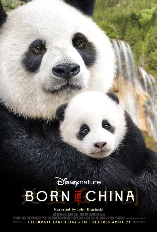 Born in China is one of many Disney movies being released in 2017.