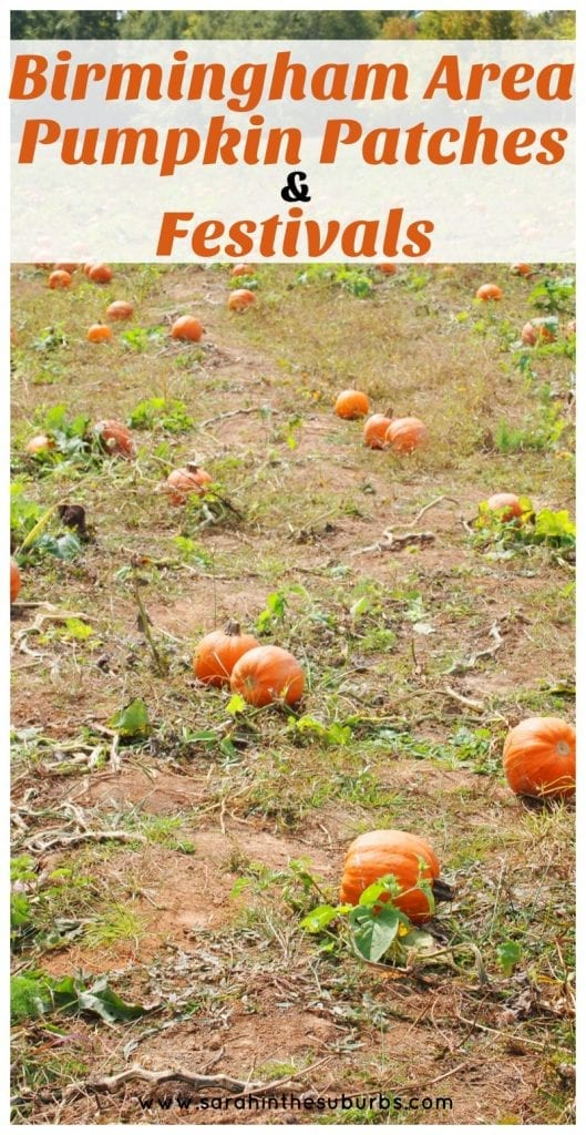 Fall activities are just around the corner! Make your plans simpler with this great round up of Birmngham area pumpkin patches and festivals. We've got all the details on when, where, and what you should make plans to do this season.