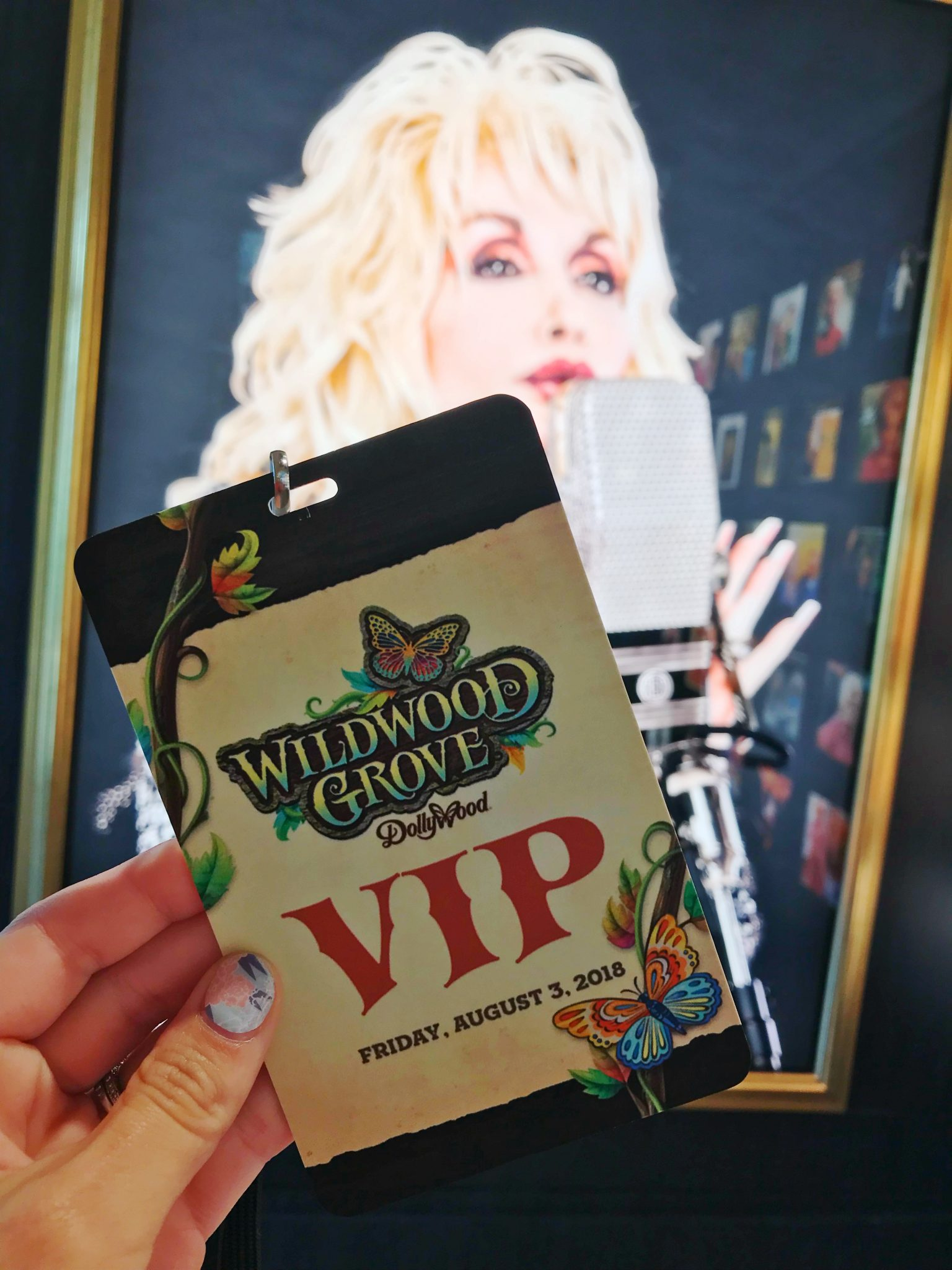 Dollywood Wildwood Grove Area Coming in 2019   Sarah in the