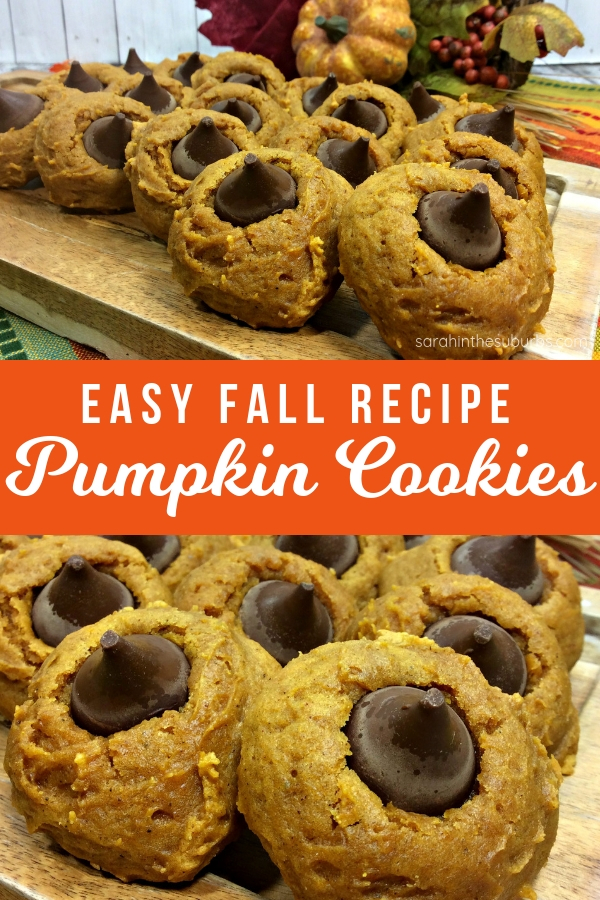Need a little more pumpkin in your life? Then you have got to try this easy pumpkin cookies recipe! What could be better than warm, pumpkin flavored cookies and chocolate? Not much! #pumpkincookies #pumpkinrecipe #cookies #cookierecipe #pumpkin #fall #fallrecipe #pumpkinchocolate #dessert #dessertrecipe #baked #bakedgoods #easyrecipe