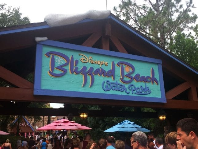 Reasons to visit Disney's water parks