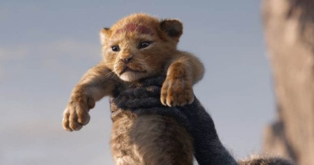 A remake of The Lion King will be in theaters July 2019.