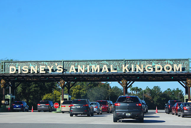 Parking entrance to Disney's Animal Kingdom.