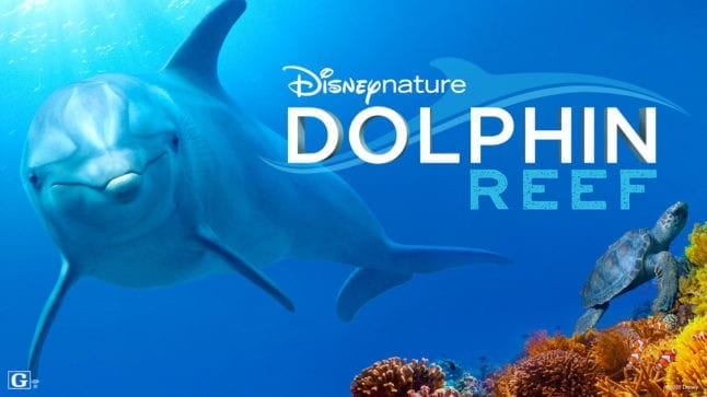 Dolphin Reef is a new movie coming to Disney Plus in April 2020