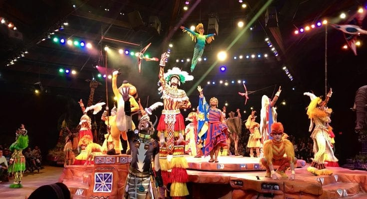 Ending of the Festival of the Lion King at Disney's Animal Kingdom