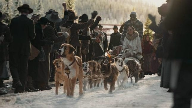 Sled dogs in The Call of the Wild.