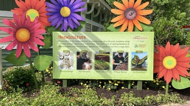 Mosaiculture description board at Dollywood