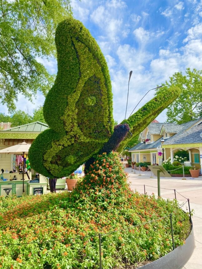 Flowers create a beautiful butterfly at Dollywood Flower and Food Festival