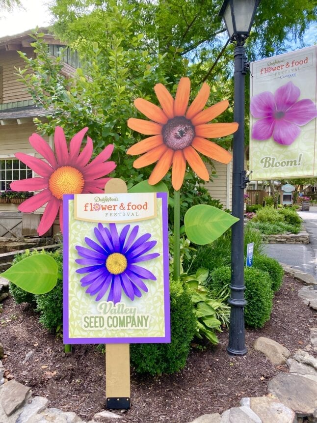 Decor for Dollywood Flower and Food Festival