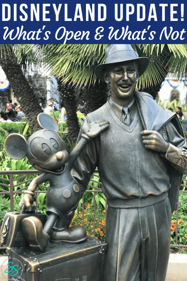 Is Disneyland open? Find out everything you need to know in this Disneyland update. Information included about California Adventure opening. #disneyland #disneytravel #disneycalifornia