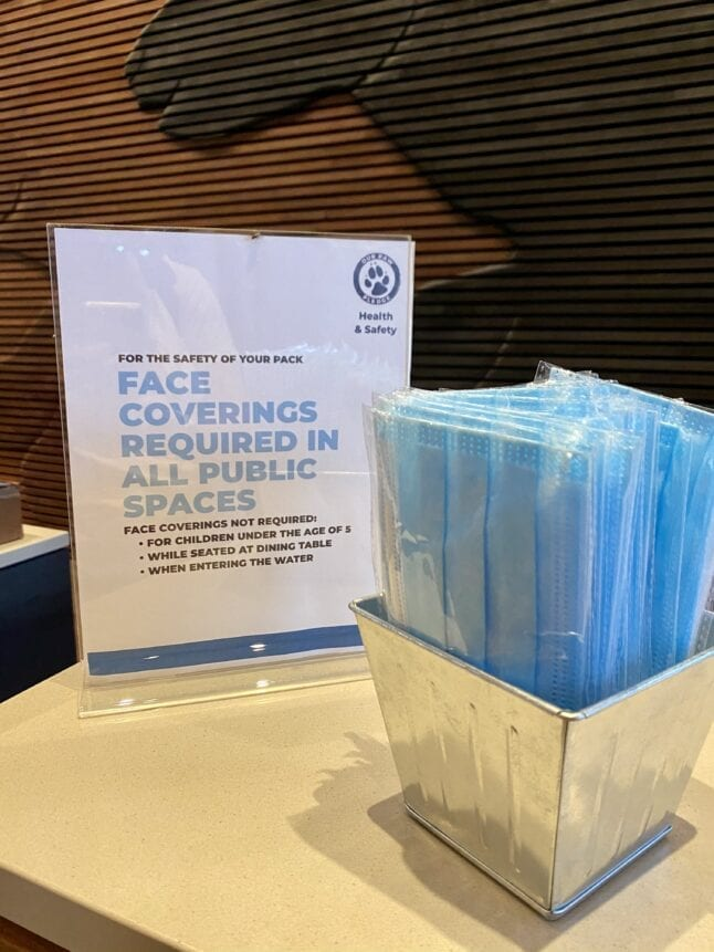 Free face masks for guests at the check-in desk.