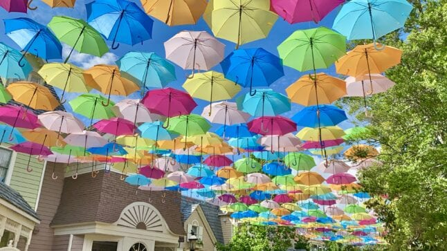 Flower and Food Festival on Dollywood's schedule of events has a beautiful umbrella sky display.