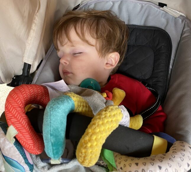 Toddlers can nap in strollers while tweens can keep riding their favorite rides!