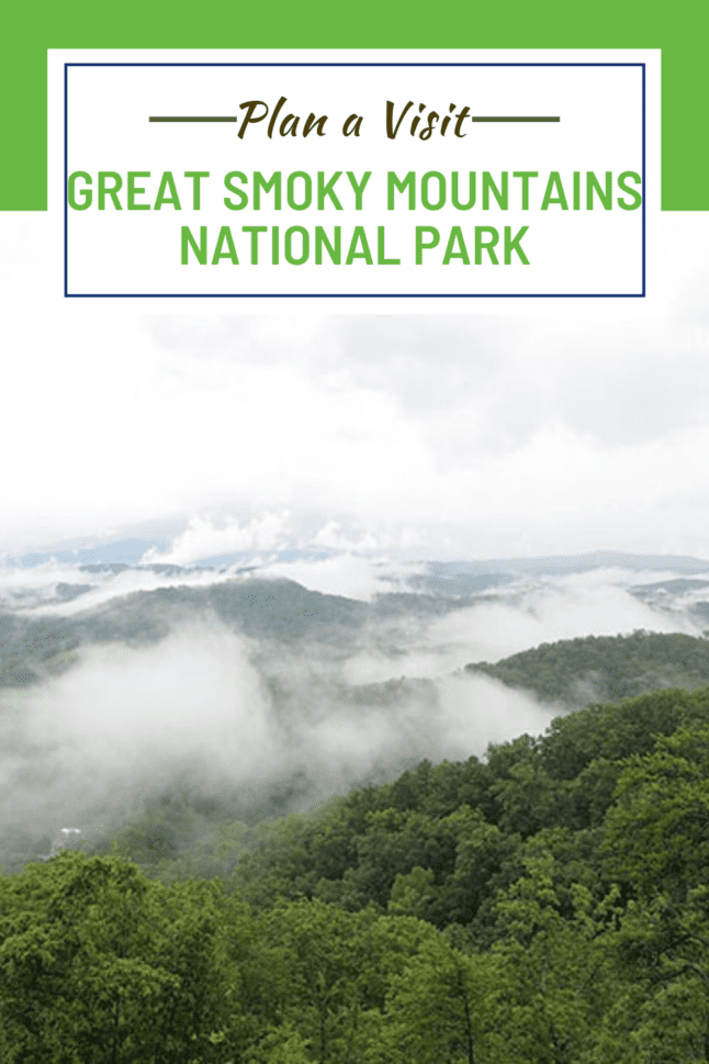 These are the best tips for planning a visit to the Great Smoky Mountains National Park in the southeastern US. #greatsmokymountains #smokies #smokymountains